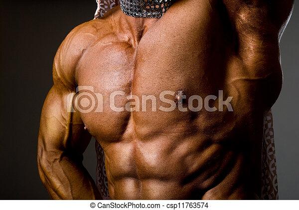 mannelijke , torso, gespierd - csp11763574