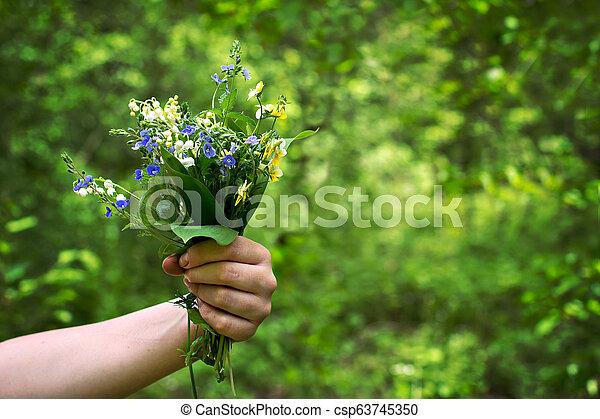 Un ramo de lirios del valle y violetas de bosque en la mano de una mujer. - csp63745350