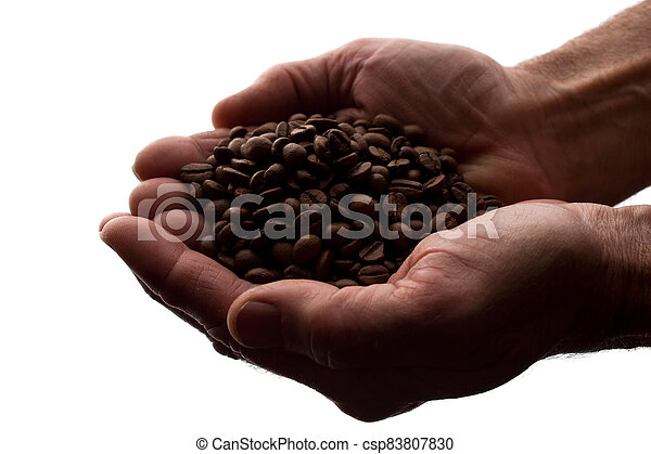 Man's hand a handful of coffee beans - silhouette - csp83807830