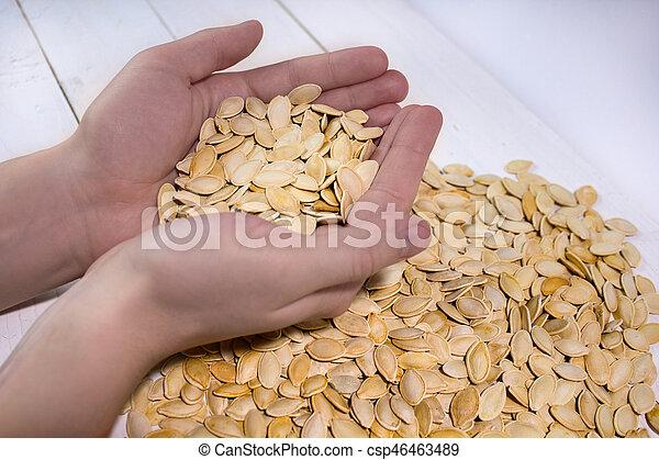 Man's hands holding pumpkin seed - csp46463489