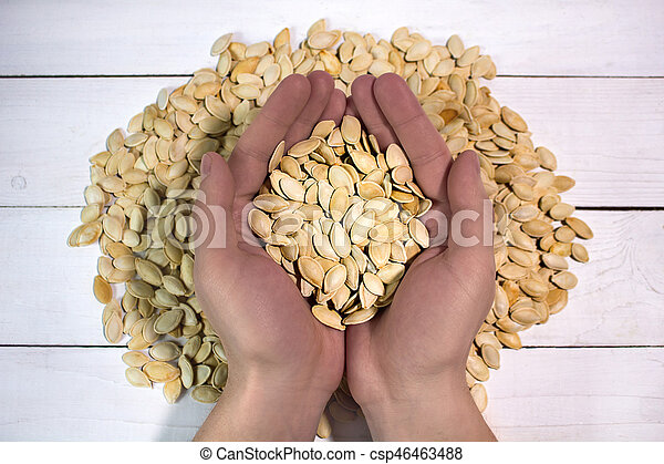 Man's hands holding pumpkin seed, top view - csp46463488