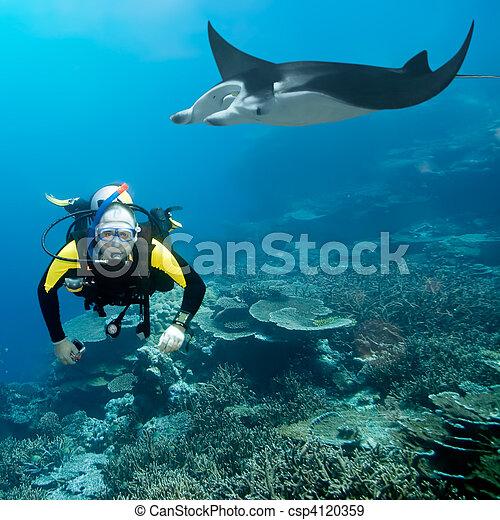Inmersión y manta - csp4120359
