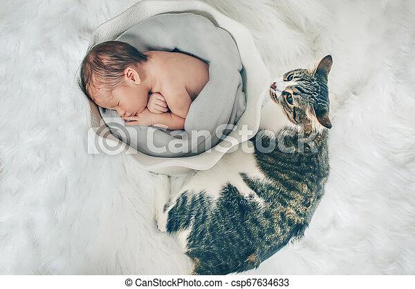 Canasta De Recien Nacido.Bebe Recien Nacido Envuelto En Una Manta Durmiendo En Una