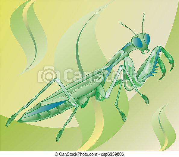 Illustrazione, erba, insetto, andare, mantide, mangiare.