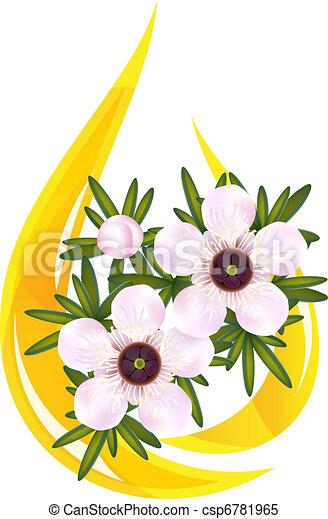Manuka or Tea tree or just Leptospermum. Stylized drop of essential oil. Vector illustration. - csp6781965