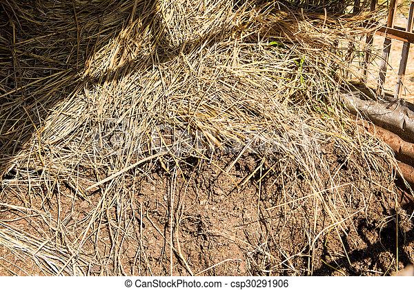 manure, fertilizer for plants - csp30291906