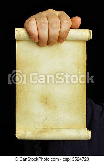 manuscrito - csp13524720