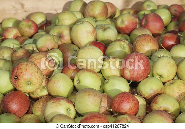 many apples in wooden boxes - csp41267824