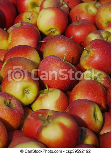 many apples in wooden boxes - csp39592192