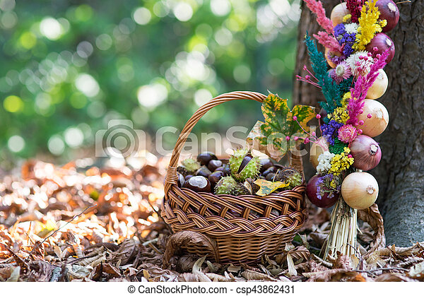 many chestnuts in a basket and decoration with onions - csp43862431