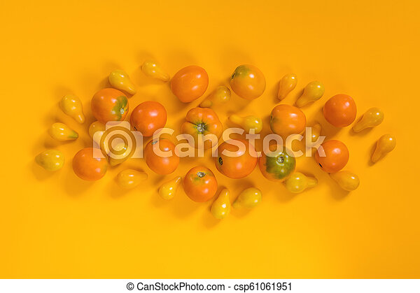 Many different red orange yellow tomatoes on yellow surface. - csp61061951