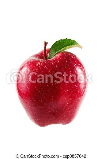 Manzana roja - csp0857042