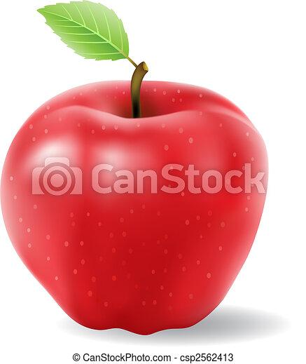 Manzana roja - csp2562413