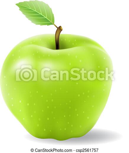 manzana verde - csp2561757