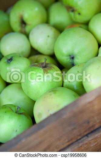 Manzanas verdes - csp19958606