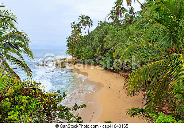 manzanillo, idilliaco, spiaggia, costa rica - csp41640165
