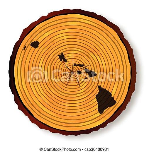 mapa, havaí, madeira - csp30488931