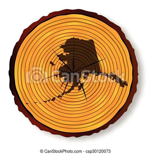 mapa, seção, fim, alasca, madeira - csp30120073