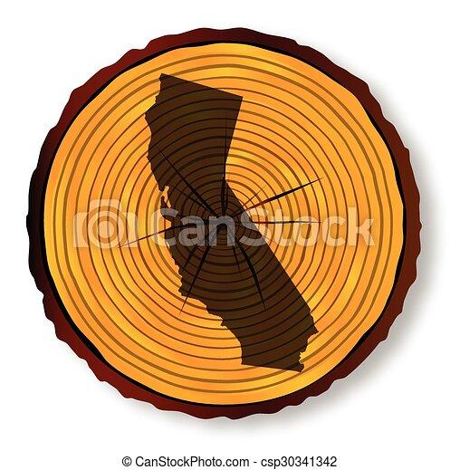 mapa, seção, madeira, fim, califórnia - csp30341342