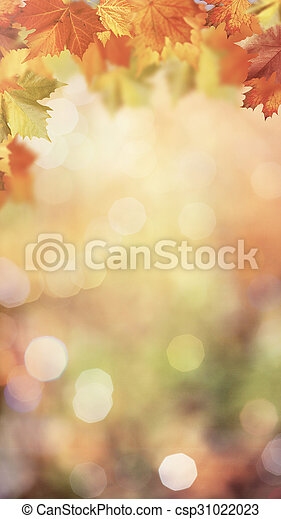Maple fall. Abstract seasonal backgrounds - csp31022023