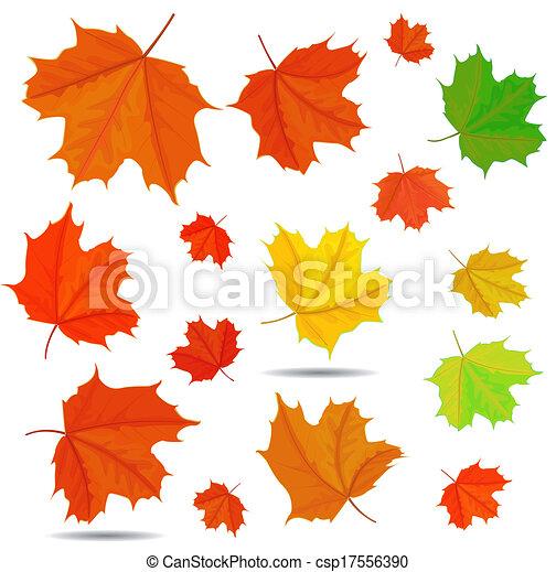 maple leaf - csp17556390
