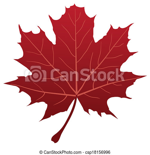 Maple Leaf - csp18156996
