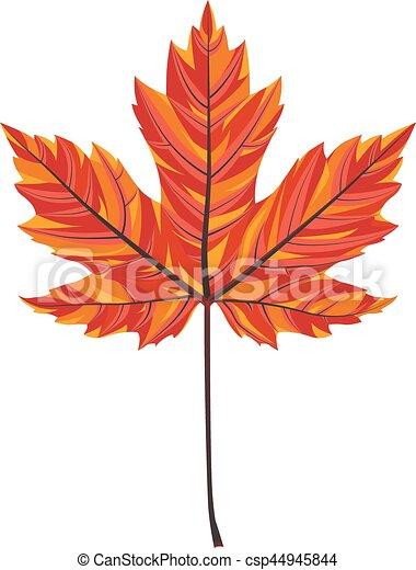 Maple Leaf - csp44945844
