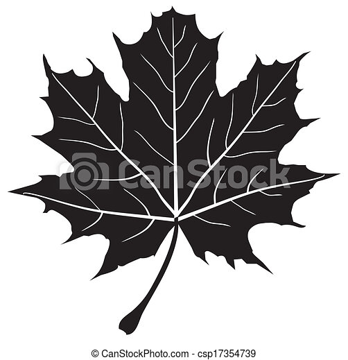 maple leaf vector maple leaf silhouette rh canstockphoto com maple leaf vector image maple leaf vector free