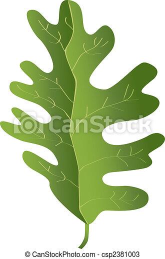 maple leaf - csp2381003