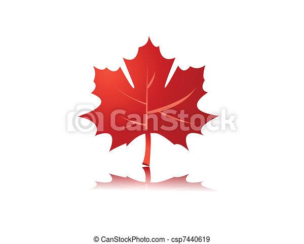maple leaf illustration - csp7440619