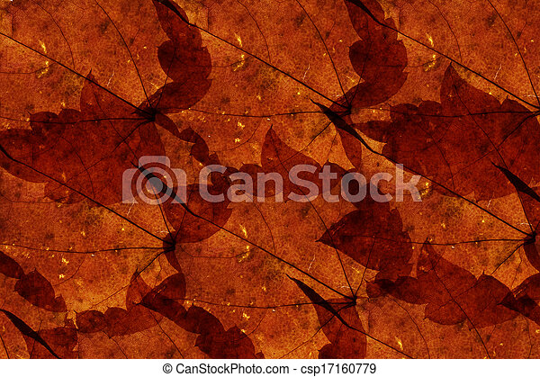 Maple leaves background - csp17160779