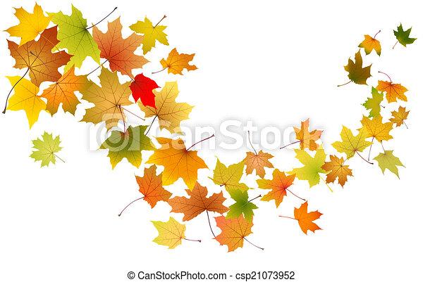 Maple leaves falling - csp21073952