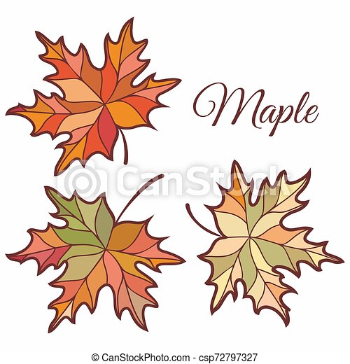 Maple leaves in stained illustration. - csp72797327