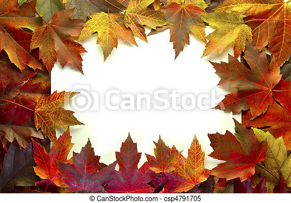 Maple Leaves Mixed Fall Colors Border - csp4791705