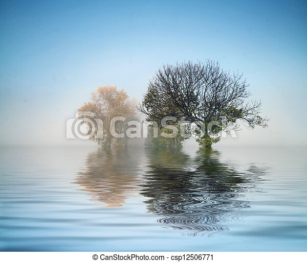 Maravilloso tiro de la naturaleza - csp12506771
