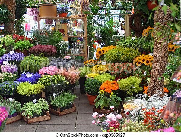 marché fleur - csp0385927