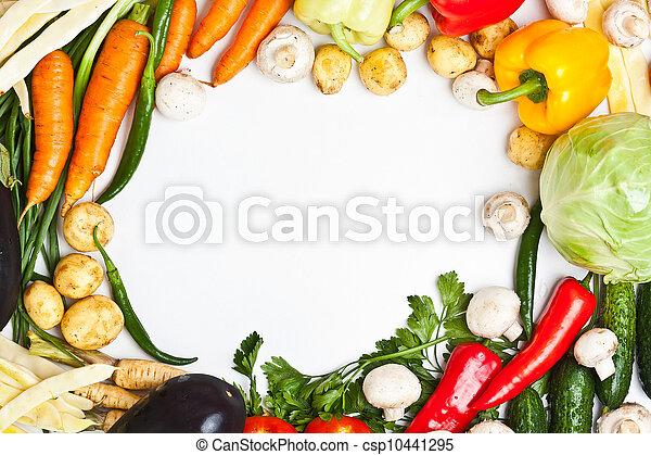 Un cuadro vegetal colorido - csp10441295
