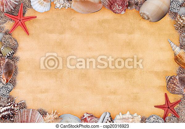 Marco, conchas de mar. Arena, plano de fondo, conchas de mar.