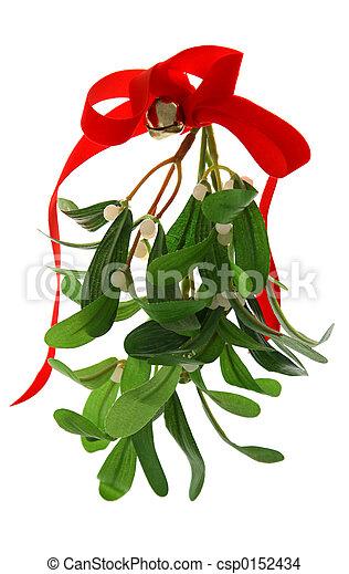 maretak, kerstmis, vrijstaand - csp0152434