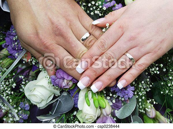 mariage, 2, anneaux, mains - csp0238444