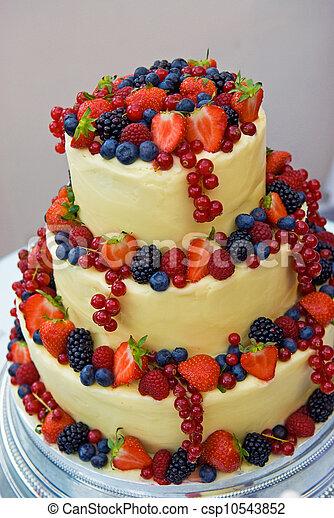 Mariage Fruite Cake Cake Couleur Mieux Fait Maison Mariage Canstock