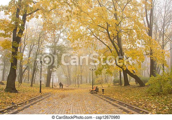 mariinsky, park, nevelig - csp12670980