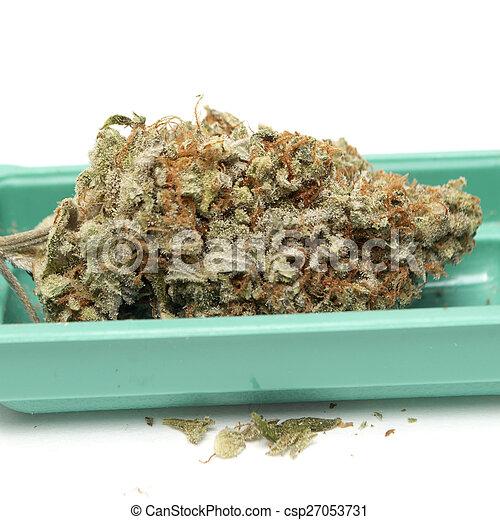 marijuana - csp27053731