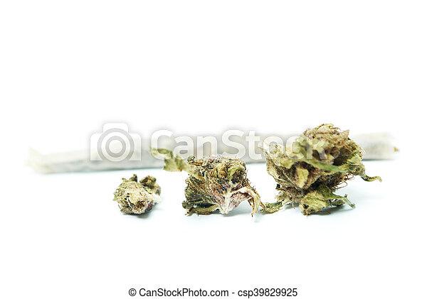 marijuana - csp39829925