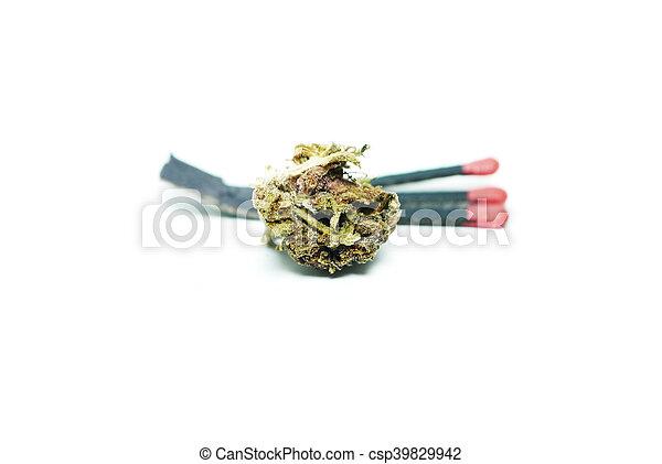 marijuana - csp39829942