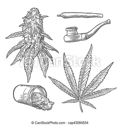 how to prepare weed leaves for smoking