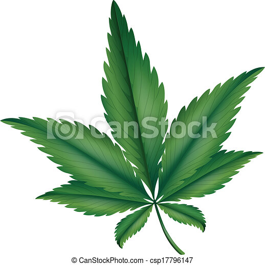 Marijuana - csp17796147