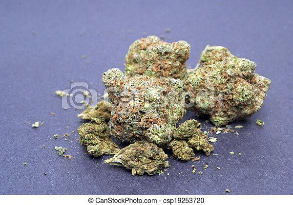 Marihuana - csp19253720