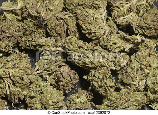 marijuana - csp12392072