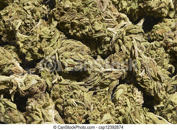 marijuana - csp12392874